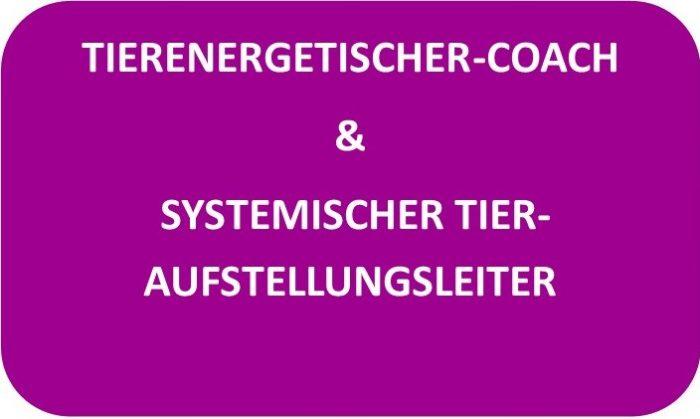 Tierenergetischer- Coach & Systemischer Tier-Aufstellungsleiter